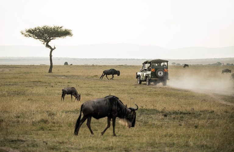 16 Awesome Ways to Explore Tanzania