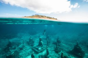 Ten Reasons Scuba Diving Can Be a Lifechanging Experience